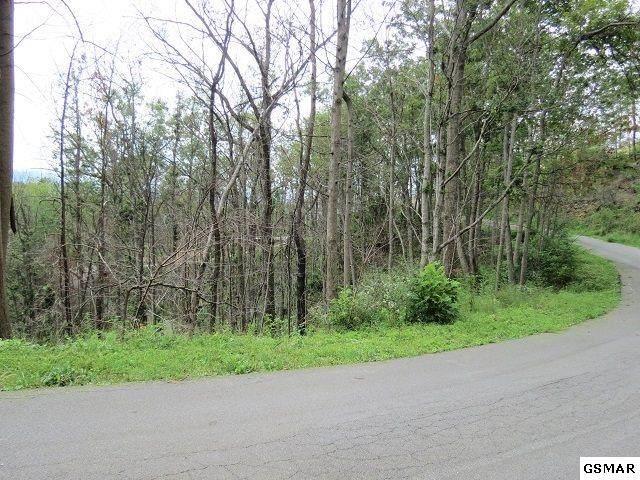 Lot 58 Deer Path Ln., Gatlinburg, TN 37738 (#243177) :: Century 21 Legacy