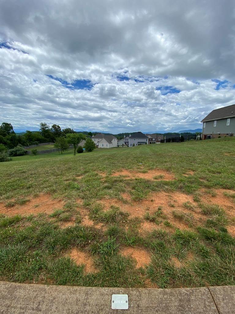 Lot 24 Vista Meadows Lane - Photo 1