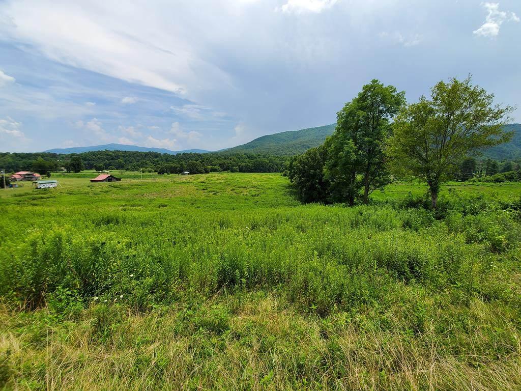 7 Acres Holders Grove - Photo 1