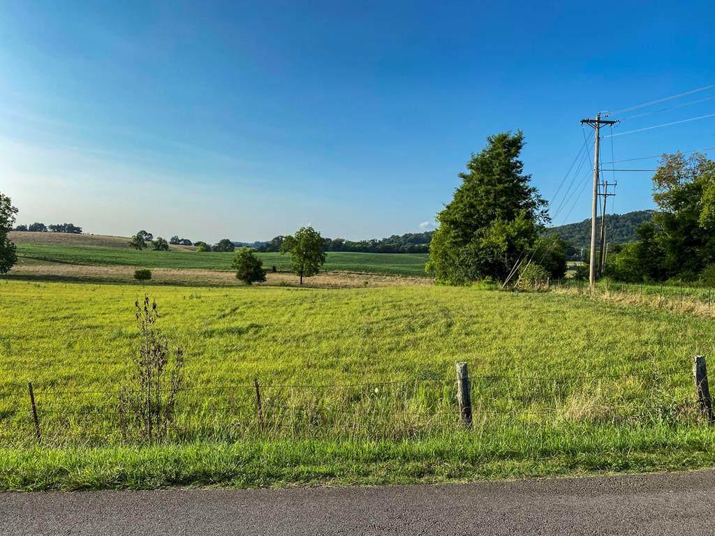 Lot 1 Flat Gap Road - Photo 1
