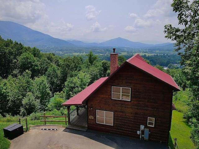 1925 Wild Iris Way Whispering Wind, Sevierville, TN 37862 (#244048) :: Colonial Real Estate