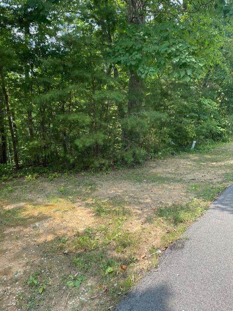 Lot 5-A Gold Dust Dr, Pigeon Forge, TN 37863 (#244097) :: The Terrell-Drager Team