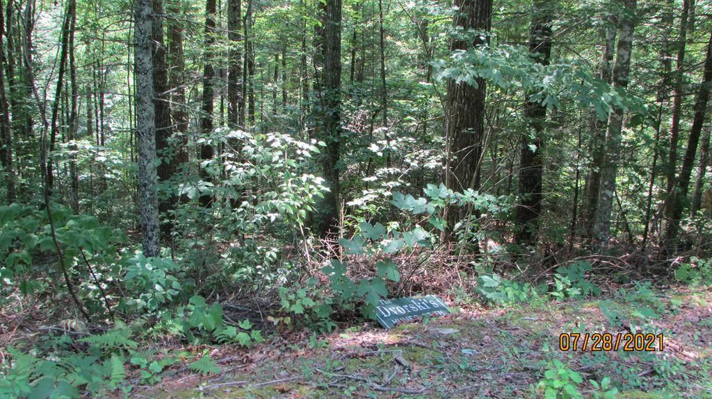 Bent Tree Lane - Photo 1