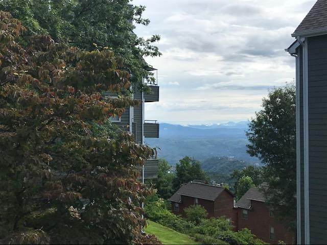 1260 Ski View Drive, Gatlinburg, TN 37738 (#244620) :: Colonial Real Estate