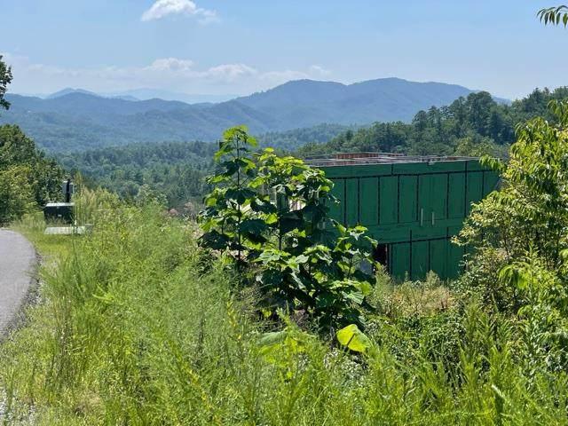 2957 Summit Trails Dr, Sevierville, TN 37862 (#244642) :: Century 21 Legacy