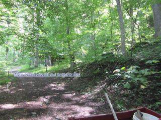 Carrs Creek Rd, Townsend, TN 37882 (#245025) :: Suzanne Walls with eXp Realty