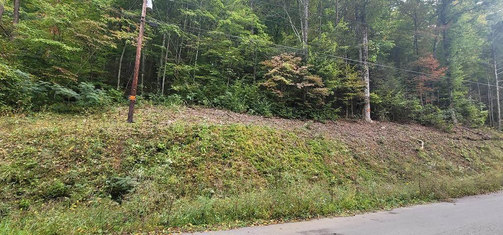 Lot 0007 Hidden Valley Rd - Photo 1