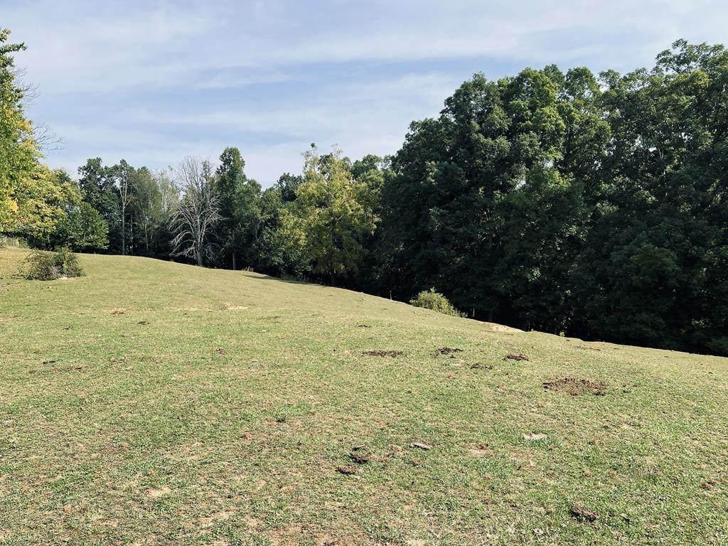 28 Acres County Line Road - Photo 1