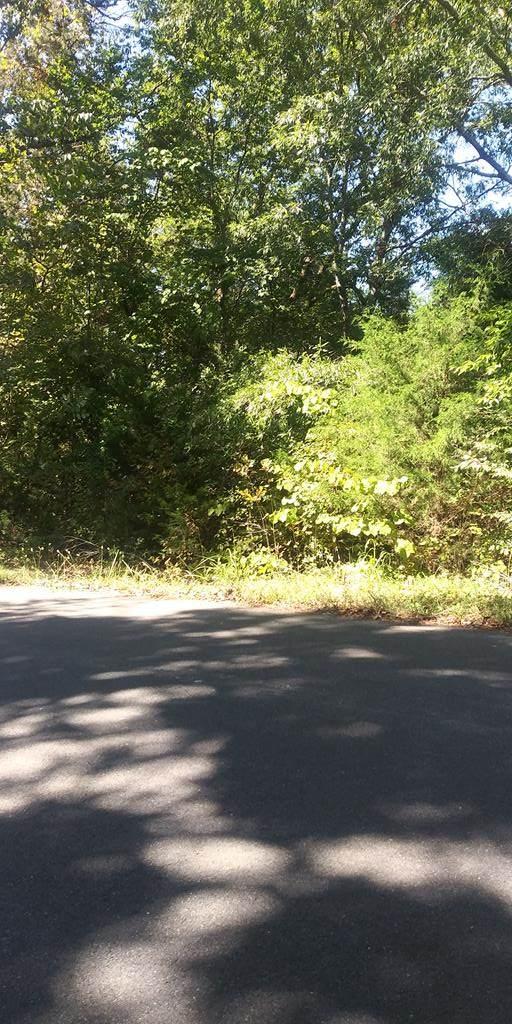 Lot 7AR Wilson Road - Photo 1