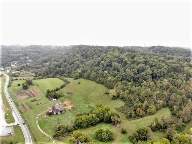 3237 Boyd's Creek Kwy, Sevierville, TN 37876 (#245510) :: Colonial Real Estate
