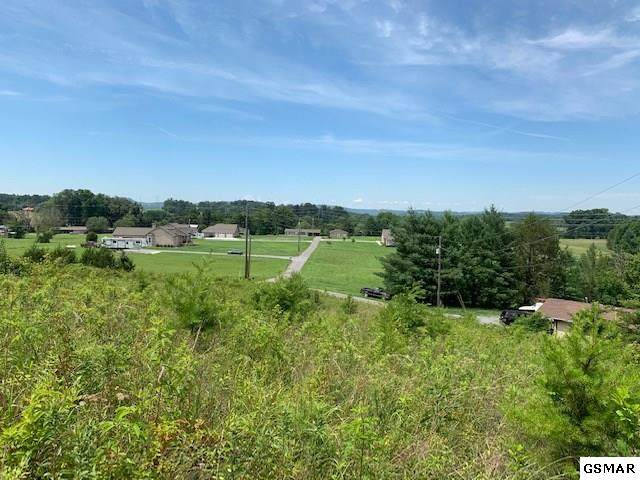 Lot 1 Atchley Dr, Sevierville, TN 37876 (#245660) :: Colonial Real Estate