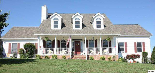 867 Amy Lea, Sevierville, TN 37862 (#245696) :: Tennessee Elite Realty