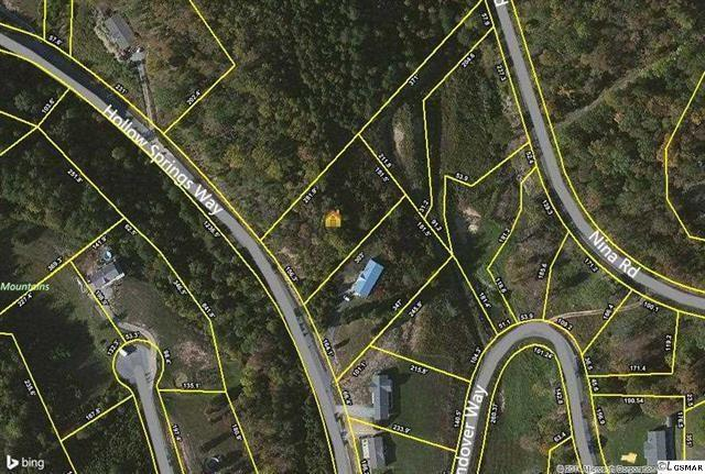 Lot 83 Hollow Springs Way, White Pine, TN 37890 (#194531) :: Billy Houston Group