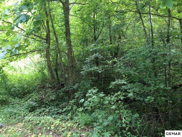 Lot 127A Azalea Trail, Sevierville, TN 37876 (#196404) :: Billy Houston Group