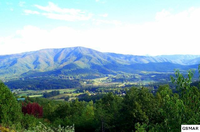 Lot 95 Hatcher Mountain Road, Sevierville, TN 37862 (#199915) :: Billy Houston Group
