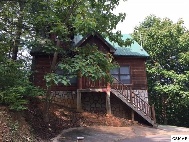 1834 Beach Front Drive, Sevierville, TN 37876 (#206919) :: Colonial Real Estate
