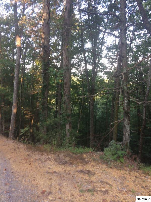 Lot#22 High Top Loop, Sevierville, TN 37862 (#212125) :: Colonial Real Estate