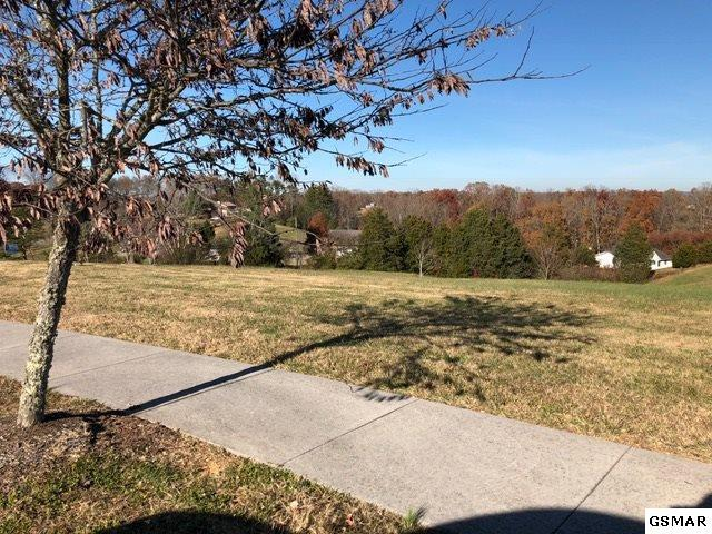 Lot 35 Oakley Manor Court, Sevierville, TN 37862 (#213371) :: Billy Houston Group