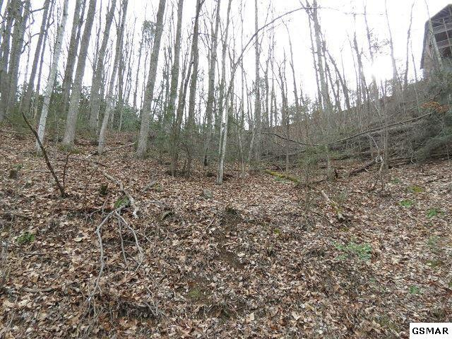 Lot 1723 Piney Dr., Sevierville, TN 37876 (#213965) :: Four Seasons Realty, Inc