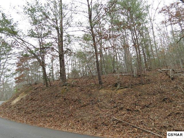 Lot 56 Bear Mtn Lane, Sevierville, TN 37876 (#213974) :: Billy Houston Group
