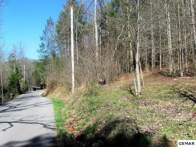 Lot 1 Rocky Flats Rd., Sevierville, TN 37876 (#214728) :: The Terrell Team