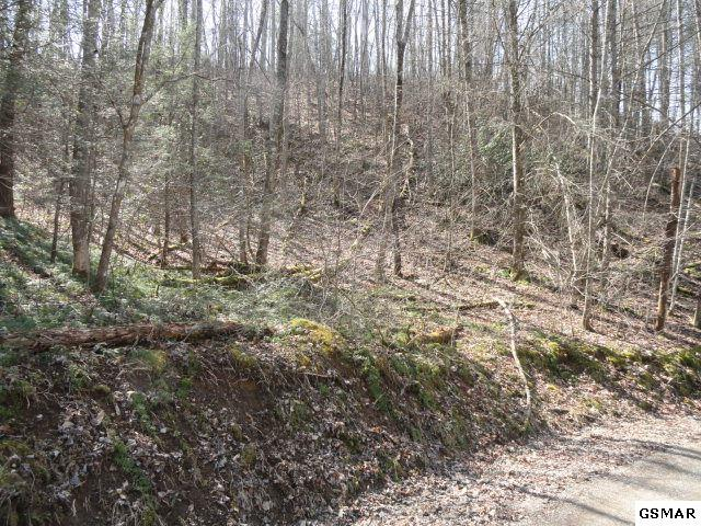 2.63 Ac Sanders Ridge Way, Sevierville, TN 37876 (#214836) :: Billy Houston Group