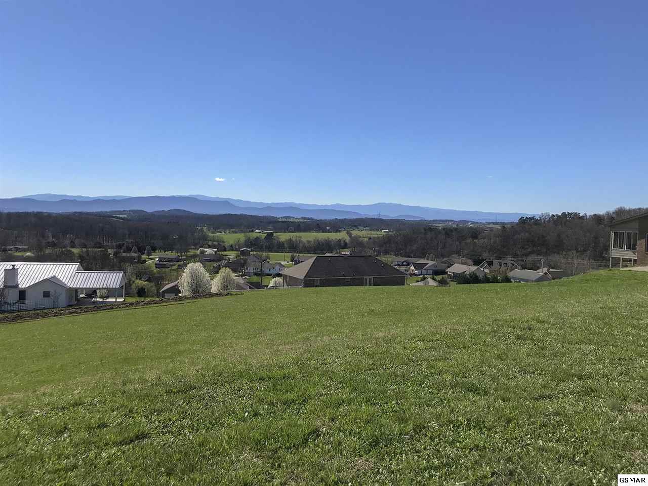 Lot 77 Scenic View Drive - Photo 1