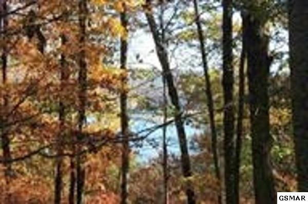 LOT 4 Lakemoore Drive, Jefferson City, TN 37760 (#215100) :: Billy Houston Group