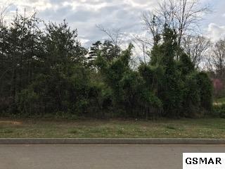 Lot 19 Rock House Rd, Kodak, TN  (#215270) :: Billy Houston Group