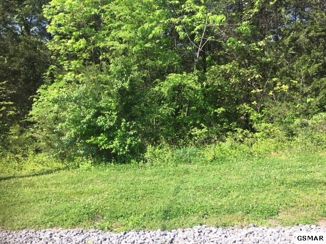 Lot 134 Eagle Feather Drive, Sevierville, TN 37876 (#215831) :: Billy Houston Group