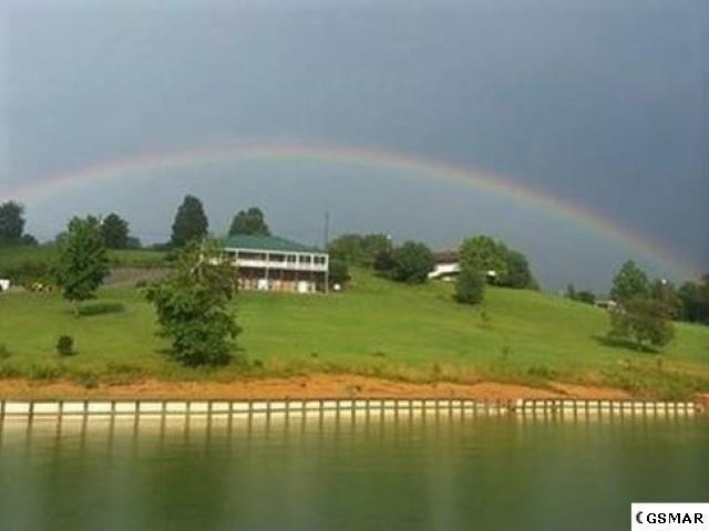 1401 Lake Front Dr, Dandridge, TN 37725 (#216073) :: The Terrell Team