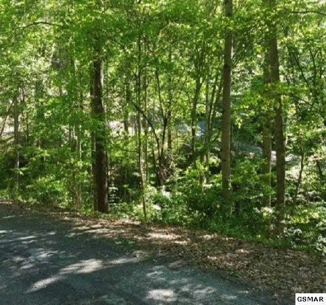 0 Lot 6 Section 15 Black Walnut Flats Rd, Sevierville, TN 37862 (#218169) :: Billy Houston Group