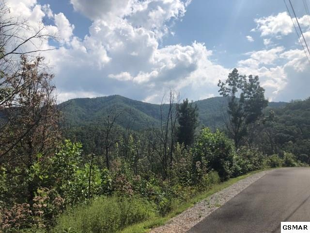1563 Mountain Dreams Way, Sevierville, TN 37862 (#218384) :: Billy Houston Group