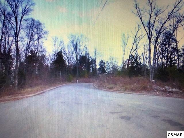 Lot 55 Oak Lake Drive, Sevierville, TN 37876 (#219211) :: Billy Houston Group
