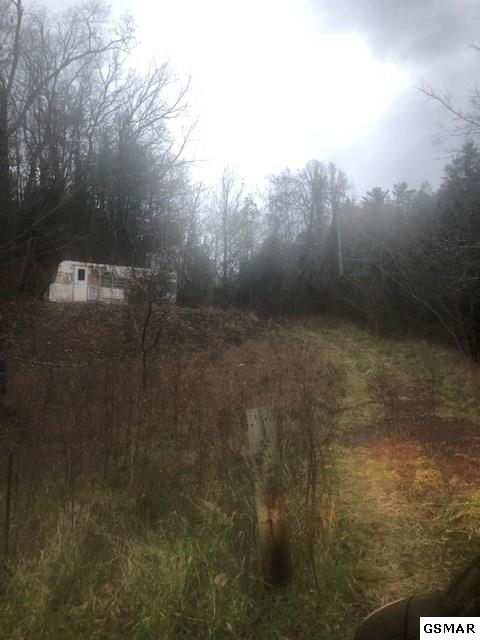 2262 Little Valley Road, Sevierville, TN 37862 (#219972) :: The Terrell Team