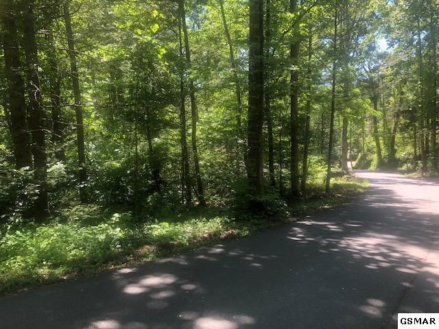Lot 2R Low Gap Road, Gatlinburg, TN 37738 (#222572) :: Prime Mountain Properties