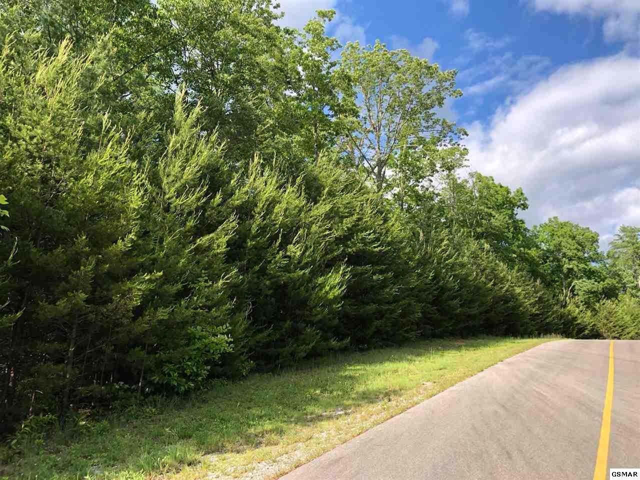 438 Hawken Drive - Photo 1