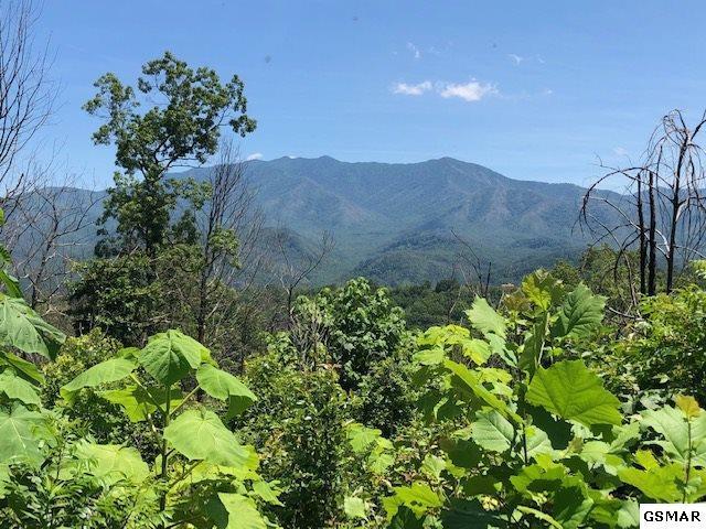 969 Wiley Oakley Dr, Gatlinburg, TN 37738 (#223120) :: Prime Mountain Properties