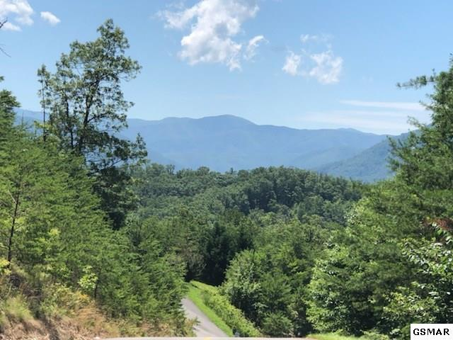 Lot 3E Stackstone Road, Sevierville, TN 37862 (#223123) :: The Terrell Team