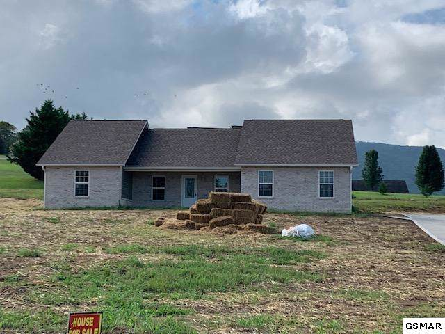 3855 Newport Highway, Sevierville, TN 37876 (#224733) :: Colonial Real Estate