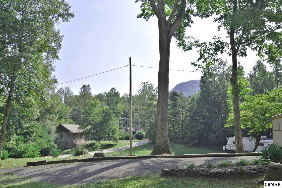 Lots 5 & 6 Laurel Springs Road - Photo 1