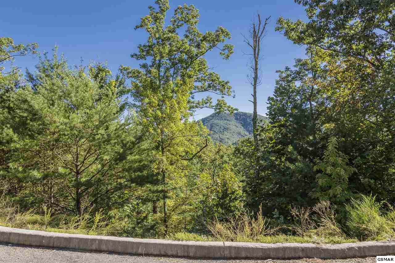 Lot 26-R Teaberry Mountain Ln - Photo 1