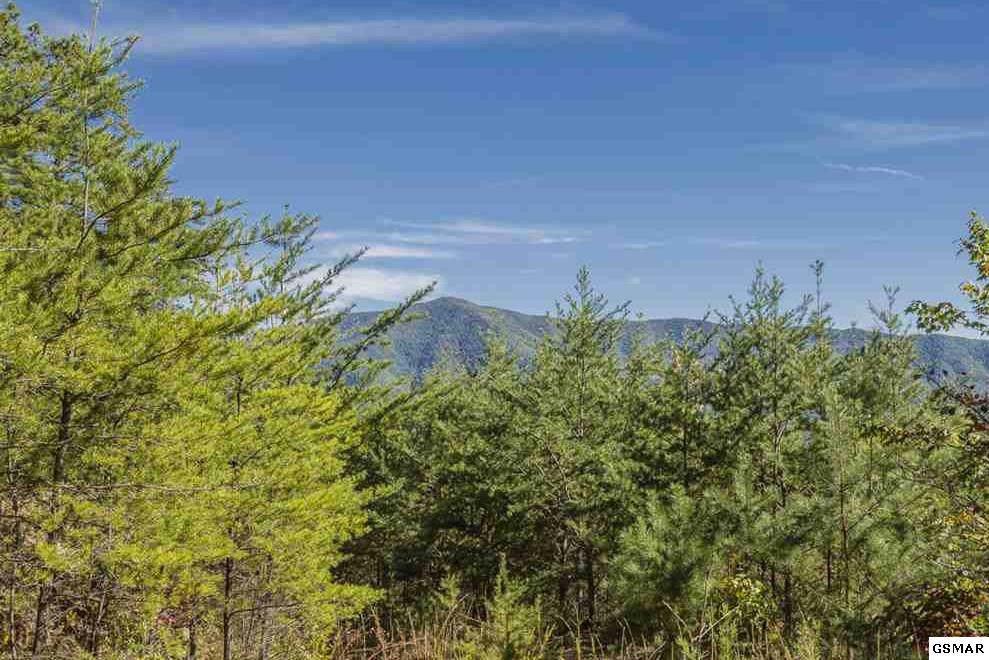 Lot 21-R Teaberry Mountain Ln - Photo 1
