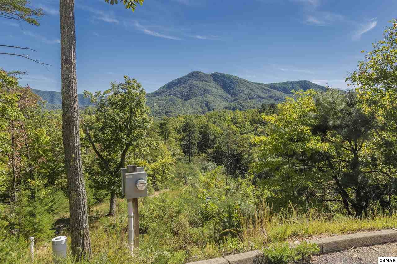 Lot 29-R Teaberry Mountain Ln - Photo 1