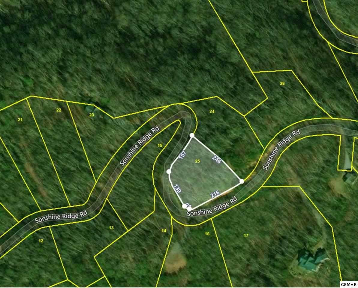 Lot 25 Sonshine Ridge Rd. - Photo 1