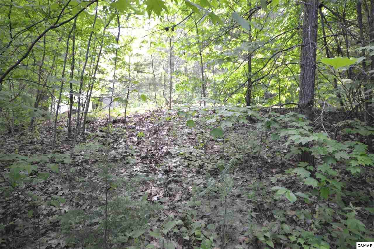 Lot Lot 66 Riversong Way - Photo 1