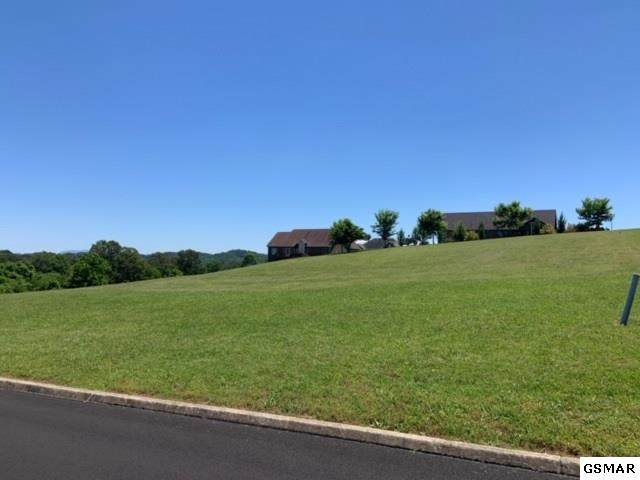 Lot 109 Ohio Street, Seymour, TN 37865 (#228483) :: The Terrell Team