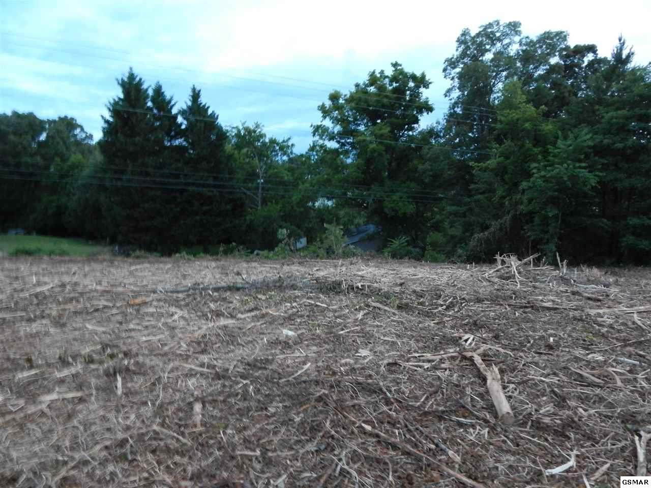 Piney Rd - Lot 2 - Photo 1