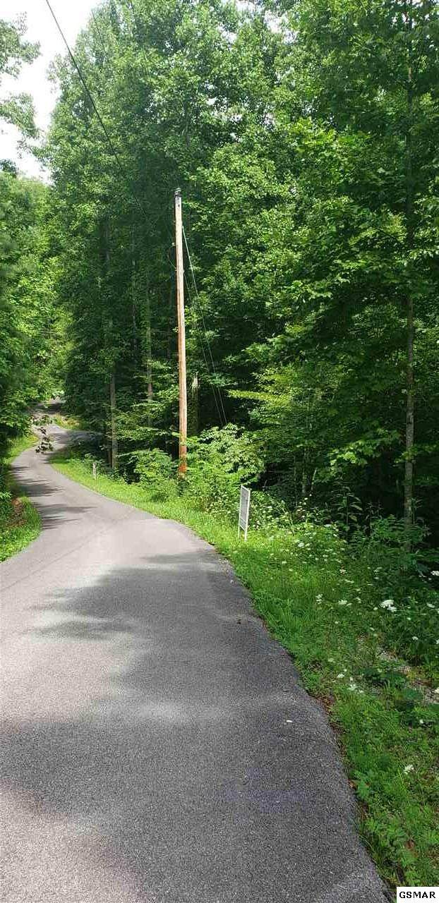 Lot 1459 Beach Front Dr, Sevierville, TN  (#229384) :: Four Seasons Realty, Inc
