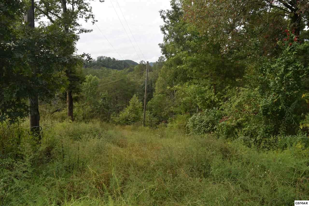 1441 Clabo Hollow Rd - Photo 1